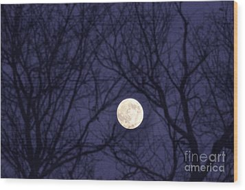 Full Moon Bare Branches Wood Print by Thomas R Fletcher