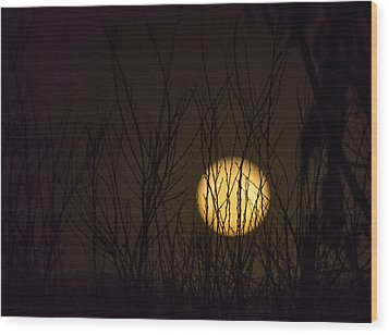 Full Moon Behind The Trees Wood Print by Angela A Stanton