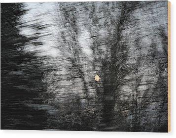 Full Moon Behind Trees Wood Print by Carolyn Reinhart