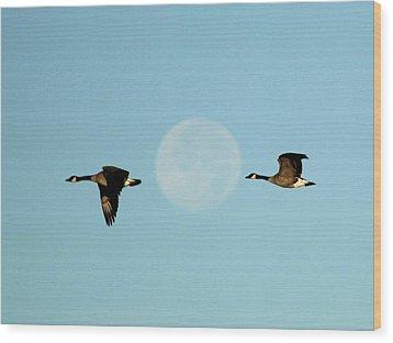 Full Moon Geese Wood Print