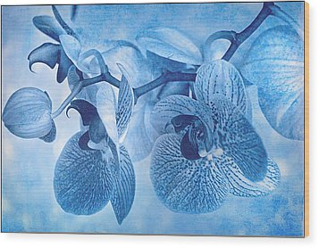 Full Moon Orchids Wood Print