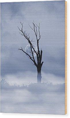 Full Moon Rising Wood Print by David Simons