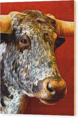 Wood Print featuring the photograph Full Of Bull by Dee Dee  Whittle