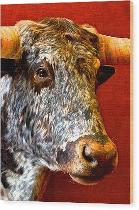 Full Of Bull Wood Print by Dee Dee  Whittle