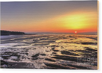 Fundy's Mud Flats Wood Print by Nancy Dempsey