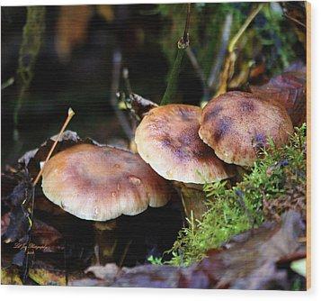 Fungus Among Us II Wood Print by Jeanette C Landstrom