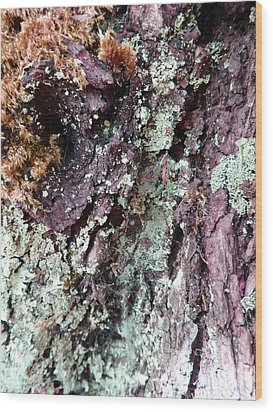 Wood Print featuring the photograph Fungus Bark Purple by Laurie Tsemak