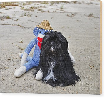 Funky Monkey And Sweet Shih Tzu Wood Print by Al Powell Photography USA