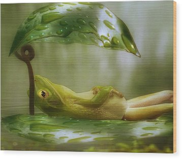 Funny Happy Frog Wood Print by Jack Zulli
