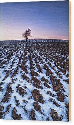 Furows In The Snow Wood Print by John Farnan