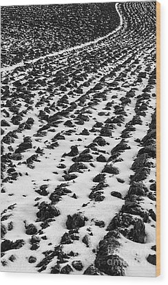 Furrows Wood Print by John Farnan