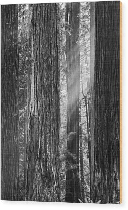Future Giants Monochrome Wood Print