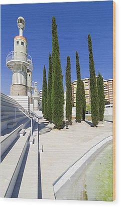 Futuristic Park In Barcelona Spain Wood Print by Matthias Hauser