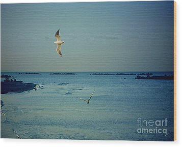Wood Print featuring the photograph Gabbiani - Seagulls by Ze  Di