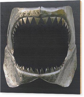 Gaint Shark Jaw Sculpture Wood Print by Stuart Peterman
