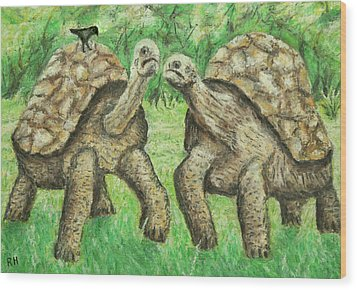 Galapagos Giant Tortoise Wood Print by Ronald Haber