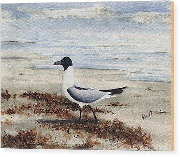 Galveston Gull Wood Print