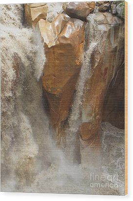 Ganesh Of Bhaghirathi Wood Print