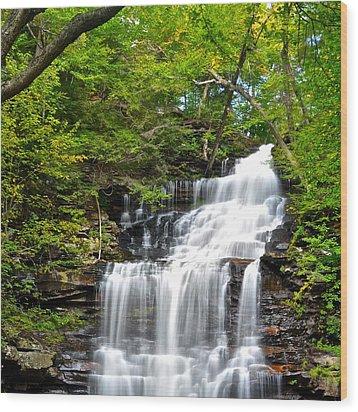 Ganoga Falls Ricketts Glen Wood Print by Frozen in Time Fine Art Photography
