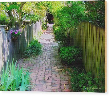 Garden Alley Wood Print