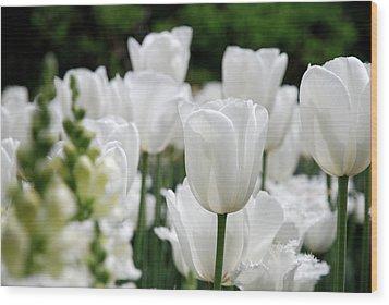 Garden Beauty Wood Print by Jennifer Ancker