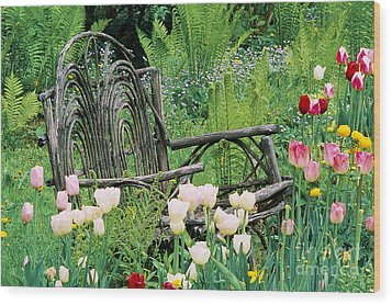 Garden Bench Wood Print by Alan L Graham