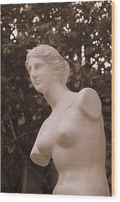 Garden Bust Wood Print by George Mount