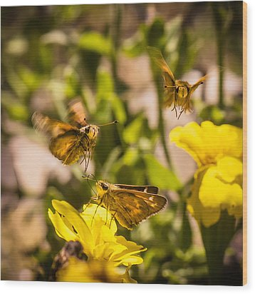 Garden Fairies Strike A Vogue Pose Wood Print