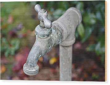 Garden Faucet Wood Print by Cathie Tyler