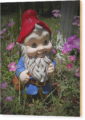 Garden Gnome Wood Print by Judy Hall-Folde