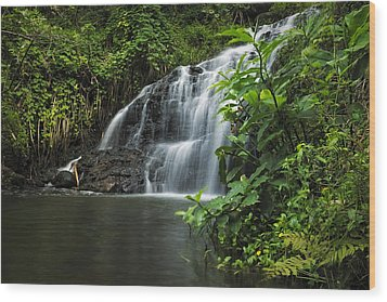 Wood Print featuring the photograph Garden Isle Waterfall by Hawaii  Fine Art Photography