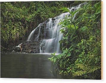 Garden Isle Waterfall Wood Print by Hawaii  Fine Art Photography