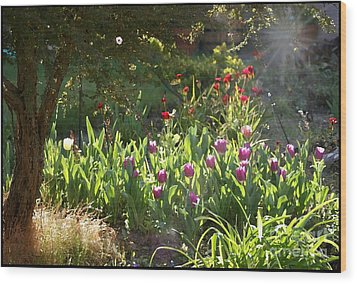 Wood Print featuring the photograph Garden by Leslie Hunziker