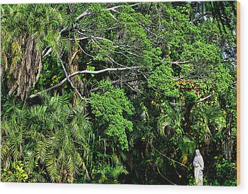 Garden Of Eden Wood Print by Joanna Madloch