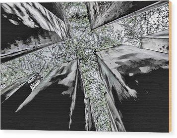 Garden Of Exile Wood Print by Peter Benkmann