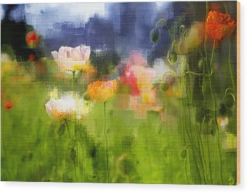 Wood Print featuring the photograph Garden Of Poppies by Linde Townsend