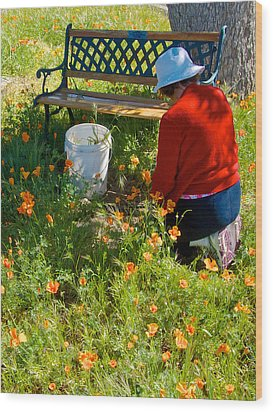 Garden Party In Park Sierra-ca Wood Print by Ruth Hager