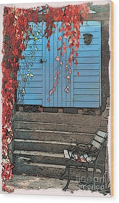 Garden Shed Wood Print by Paul Stevens