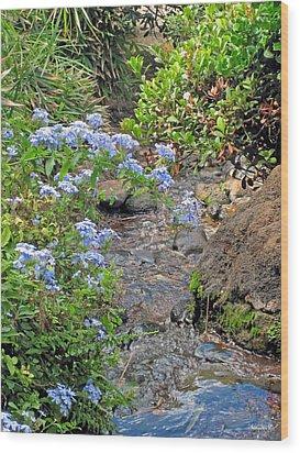 Garden Stream Wood Print