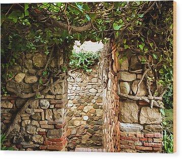 Garden Walls Wood Print by Lutz Baar