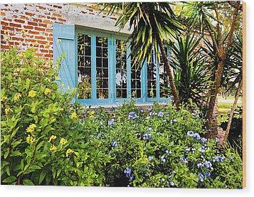 Garden Window Db Wood Print by Rich Franco