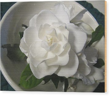 Gardenia Bowl Wood Print by Deborah Lacoste