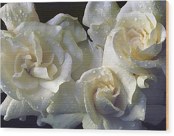 Gardenia I Wood Print
