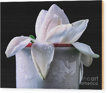 Wood Print featuring the photograph Gardenia In Coffee Cup by Silvia Ganora