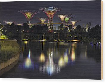 Gardens By The Bay Supertree Grove Wood Print by David Gn