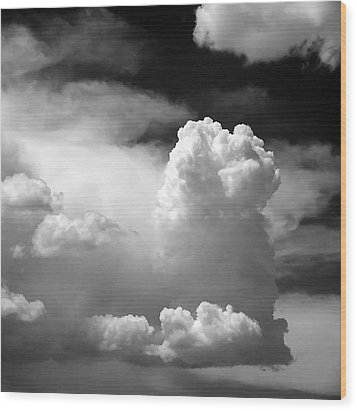 Garfield In The Skies Wood Print by Christine Till
