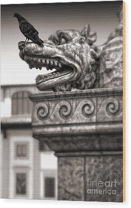 Gargoyle And Pidgeon - Sepia Wood Print by Gregory Dyer