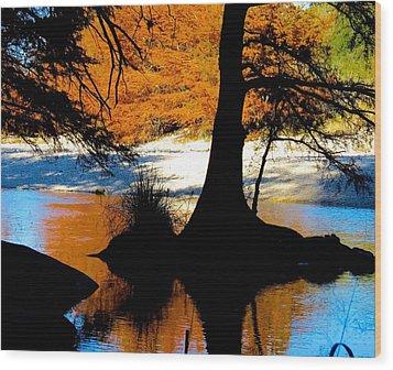 Garner State Park Wood Print