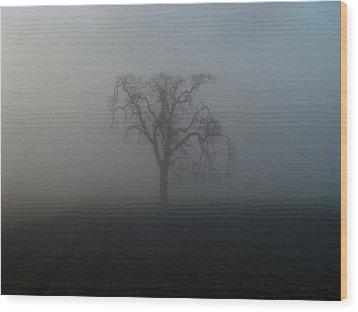 Garry Oak In Fog Wood Print by Cheryl Hoyle