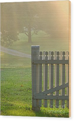 Gate In Morning Fog Wood Print by Olivier Le Queinec